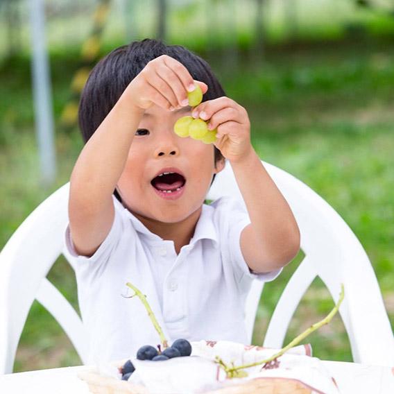 ぶどう食べる子ども